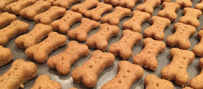 Easy Peanut Butter Bones Treats for Small Dogs