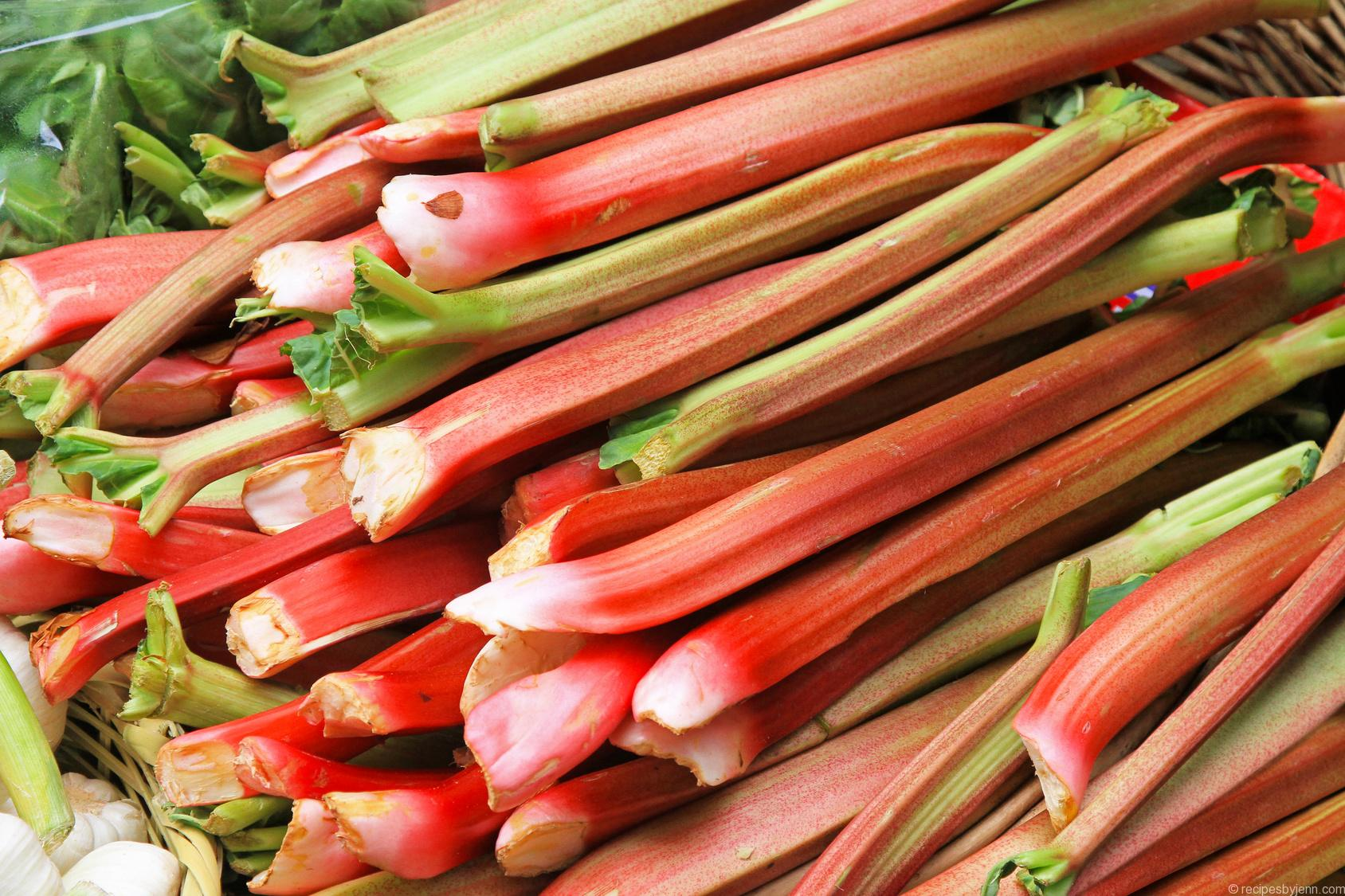 Big pile of organically grown rhubarb vegetable